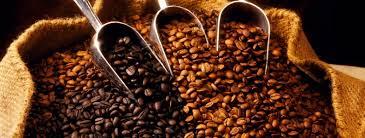 Café de altisima calidad